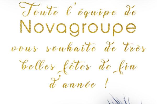 Novagroupe vous souhaite de merveilleuses fêtes de fin d'année !